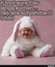 Könnt eure Eier lange suchen..   Lustige Bilder, Sprüche, Witze, echt lustig