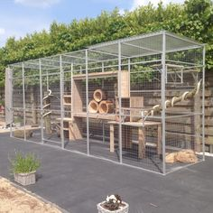 Nice 25 Best Outdoor Cat Enclosures https://meowlogy.com/2017/10/04/25-best-outdoor-cat-enclosures/ There are many obvious advantages to keeping your cat indoors