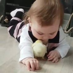 My heart just melted 💕 Mooi maar beestje zoekt mama💔 Funny Videos For Kids, Cute Baby Videos, Cute Animal Videos, Cute Animal Pictures, Sports Pictures, Funny Baby Pictures, Cute Funny Babies, Funny Kids, Funny Cute