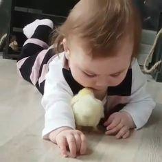My heart just melted 💕 Mooi maar beestje zoekt mama💔 Cute Funny Baby Videos, Cute Funny Babies, Funny Baby Memes, Funny Videos For Kids, Cute Animal Videos, Funny Kids, Funny Cute, Funny Baby Pictures, Cute Little Baby