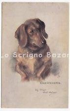 non viaggiata TUCK'S postcard cartolina cane bassotto dachshund Dackel teckel