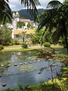 Furnas, São Miguel, Açores  Portugal