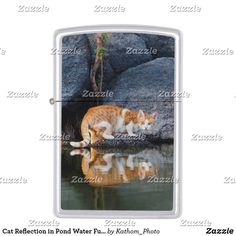 Cat Reflection in Pond Water Funny Photo windproof