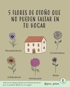 Fruit Flowers, Fruit Plants, Herb Garden In Kitchen, Over The Garden Wall, Mom Day, Farm Gardens, Plant Decor, Doodle Art, Vegetable Garden