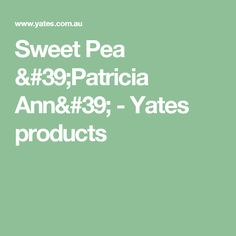 Sweet Pea 'Patricia Ann' - Yates products