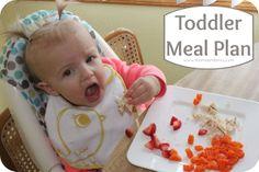 Toddler Meal Plan