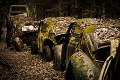A day at the car cemetery - stucked in traffic