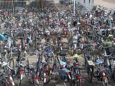 Everyone rides a bike in Holland.