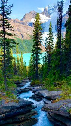 Berg Lake Trail: Waterfalls, Meadows, Glacial Lakes and More