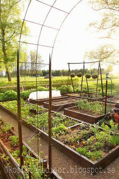 Potager Garden, Raised Garden Beds, Raised Beds, Green Garden, Edible Garden, Garden Planning, Garden Inspiration, Interior Design Living Room, Vegetable Garden