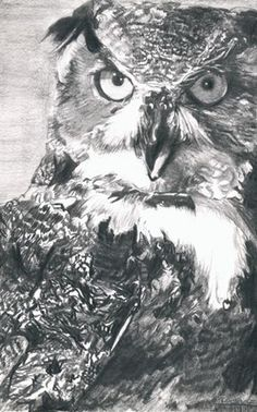 Lisandro Pena. Рисунок карандашом.  Большая рогатая сова
