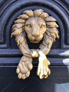 Door, Lion, Knocker, Handle