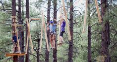 Play in the Trees at Flagstaff Extreme Adventure Course | Hotel ...