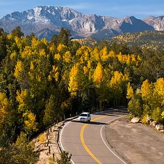 pikes peak in the fall | Aspens in the Fall on Pikes Peak Highway Just Before Crystal Reservoir