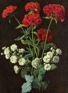 "https://flic.kr/p/rW5giP | ""Still life with a spray of red verbena and white roses"" (18th century) Alexis Nicolas Perignon 