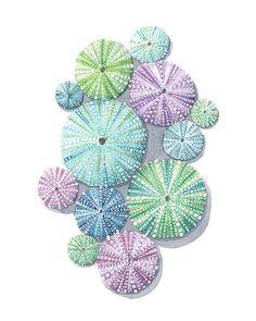 Beach Watercolor, Watercolor Artwork, Watercolor Print, Seashell Painting, Seashell Art, Seashell Drawings, Stone Painting, Sea Urchin Shell, Sea Shells