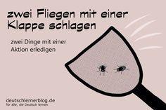 zwei Fliegen mit einer Klappe - Redewendungen - Deutsch lernen