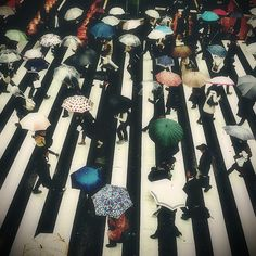 under my umbrella, brella, brella...via ak47