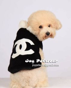 The Zhush: Random Chanel Item No. It's louis in Chanel! Animal Design, Dog Design, Mademoiselle Coco Chanel, Designer Dog Clothes, Little Puppies, Dog Coats, Dog Shirt, My Guy, Puppy Love