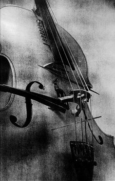 awe a violin...nothing better, except...