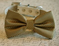 Gold bow tie attached to leather dog collar Chic Dog by LADogStore, $29.99 #Gold #GoldWedding #2014Wedding #Wedding #GoldBowTie #GoldGifts #GoldAccessory #LADogStore #LA #Dog #Store #DogStore #Unique #Amazing #Gifts #Pet #Animal #Collar #Shop #WeddingDogCollar #UniqueWedding #Party #Birthday #Holiday #Occasion