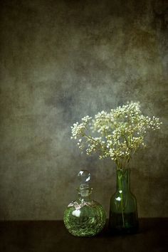 Baby's Breath bottles vase texture still life green by janepackard
