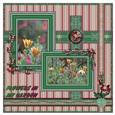 Flowers in my garden TravlynWomyn-TravlynWomyn_November10_PTBCC_M2D-