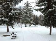 park pri kaštieli v Humennom