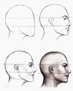 Anatomy Drawing Tutorial - How to Draw a Face : Here's a simple way to place the features accurately when drawing a head. First draw a vertical line down the middle of the face. Then draw a horizontal line halfway Drawing Techniques, Drawing Tips, Drawing Sketches, Pencil Drawings, Painting & Drawing, Drawing Drawing, Drawing Reference, Drawing Ideas, Sketching