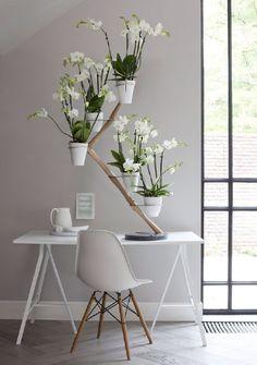 fran ois hannes d corateur d int rieur l orchid e n est pas seulement une source d inspiration. Black Bedroom Furniture Sets. Home Design Ideas