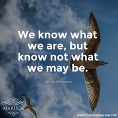 We Know what we are, but know not what we may be. (William Shakespeare) For Professionally managed villas around the world 🌎-The Maruca Group For Details:  Please contact us @themarucagroup  Reservations@themarucagroup.com  www.themarucagroup.com  +1305-218-5216 #Future #BePrepared #Life #past #Present #tech #innovation #technology  t#plan #work #earn #believe #trust #faith #journey #path #luck #improve #beGood #FightForBest  #TheMarucagroup #Hamptons #Palmsprings #Southbeach #Bahamas…