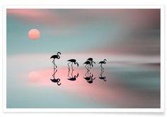 Family flamingos - Natalia Baras als Premium Poster