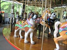 Staten Island's Greenbelt for NYC Kids: An Awesome Carousel