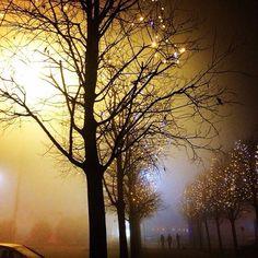 Light up my life. #misty #foggy #cold #night_photography #nature_earth #nothingisordinary #love #view #piramidi #lights #vignette #hangout #branches #tress #shot #christmas #celebration #december #winter