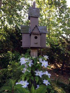 Taloyer 10Pcs Rare Desert Rose Bonsai Mixed Colors Flower Seeds Home Garden Plants
