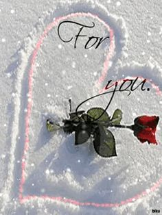 phone wall paper for girls Foto animada Love You Hubby, Dont Love Me, Love Is Sweet, True Love, Just For You, Love You Gif, Love You Images, Love Pictures, Beautiful Love
