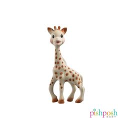 Here's Sophie the Giraffe! Babies love the scent and texture of this classic toy, made of 100% natural rubber with food grade paint! Makes the perfect gift. Priced at $19.99.  http://www.pishposhbaby.com/sophie-the-giraffe.html