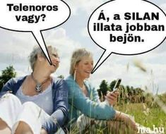 Funny Jokes, Haha, Funny Pictures, Comics, Fanny Pics, Husky Jokes, Ha Ha, Funny Pics, Funny Images