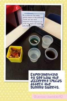 Experimenting with gummy bears and different liquids.