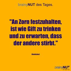 brainyNUT of the day Cool Slogans, Self Conscious, Live Love, Word Porn, True Words, Self Improvement, Great Quotes, Quotations, Poems