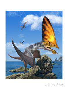 Art illustration - Pterosaur - Tupandactylus: is a genus of pterosaur from the…