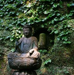 Kamakura - Tokei-Ji cemetery | Flickr : partage de photos !