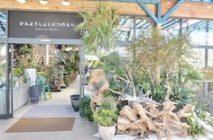 2015年4月に、西日本最大級のガーデンセンターとしてオープンした「the Farm UNIVERSAL(ザ・ファーム・ユニバーサル)」。 2016年3月18日(金)には、千葉のFRESPO稲毛内に関東最大規模の「the Farm UNIVERSAL」がオープンしました。 今回は、内覧会の様子をレポート...