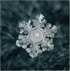 Snowflake - a miracle in miniature (ice, macro, pattern, snowflake, water)