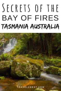 Discover the secrets of the Bay of Fires in Tasmania, Australia.. #australia #tasmania #baysoffires #thingstodo #thegardens #redrocks #hallsfalls #lagoon #humbugpoint