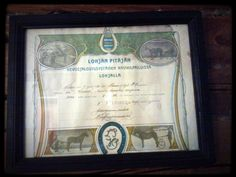 Trotting diploma for the 1st position from 02/1913