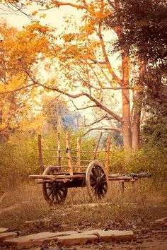 - Millions of Creative Stock Photos, Vectors, Videos and Music Files For Your Inspiration and Projects. Bullock Cart, Music Files, Vectors, Stock Photos, Videos, Creative, Projects, Pictures, Photography