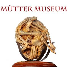 The Mütter Museum is a medical museum located in the Center City area of Philadelphia, Pennsylvania. It contains a collection of medical oddities, anatomical and pathological specimens, wax models, and antique medical equipment.