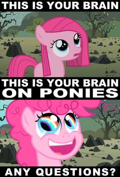 favorite meme of all time #bronies #ponies