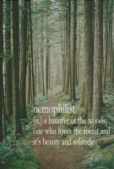 Nemophilist: woods lovers